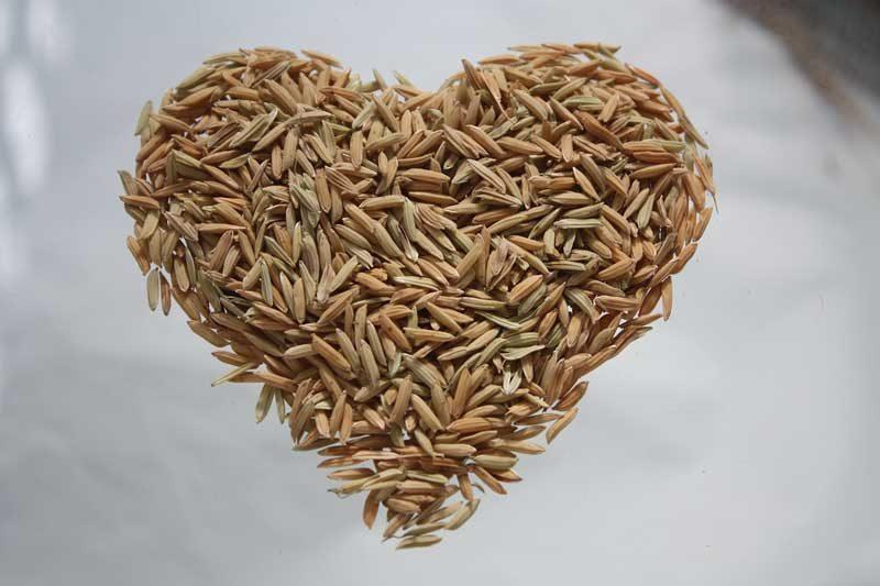 dijeta sa integralnim pirinčem
