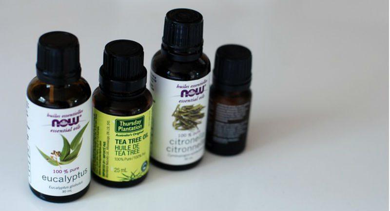 zašto se koristi eterično ulje čajevca-1
