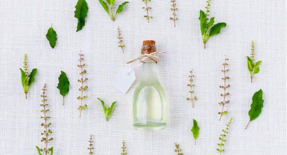 zašto se koristi eterično ulje čajevca