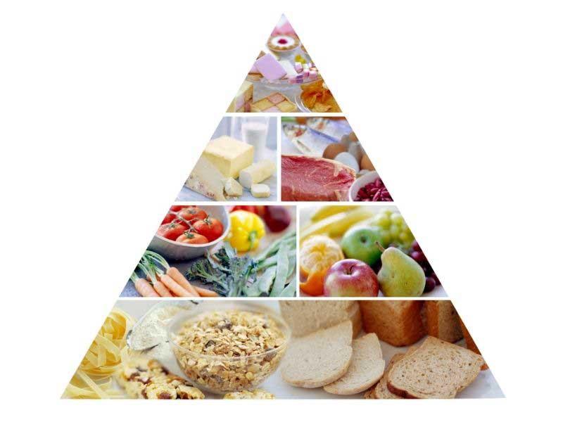 piramida ishrane za odrasle